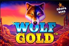 Онлайн видео слот Wolf Gold (Pragmatic Play)